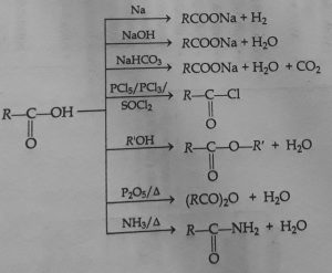 Chemical reactions of carboxylic acid